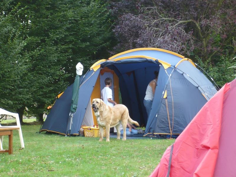 clifford en camping P1010810