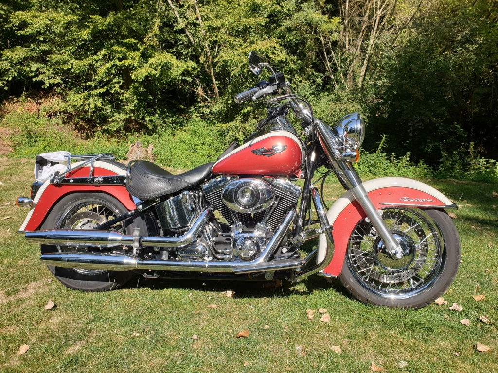 Softail DELUXE 20190912
