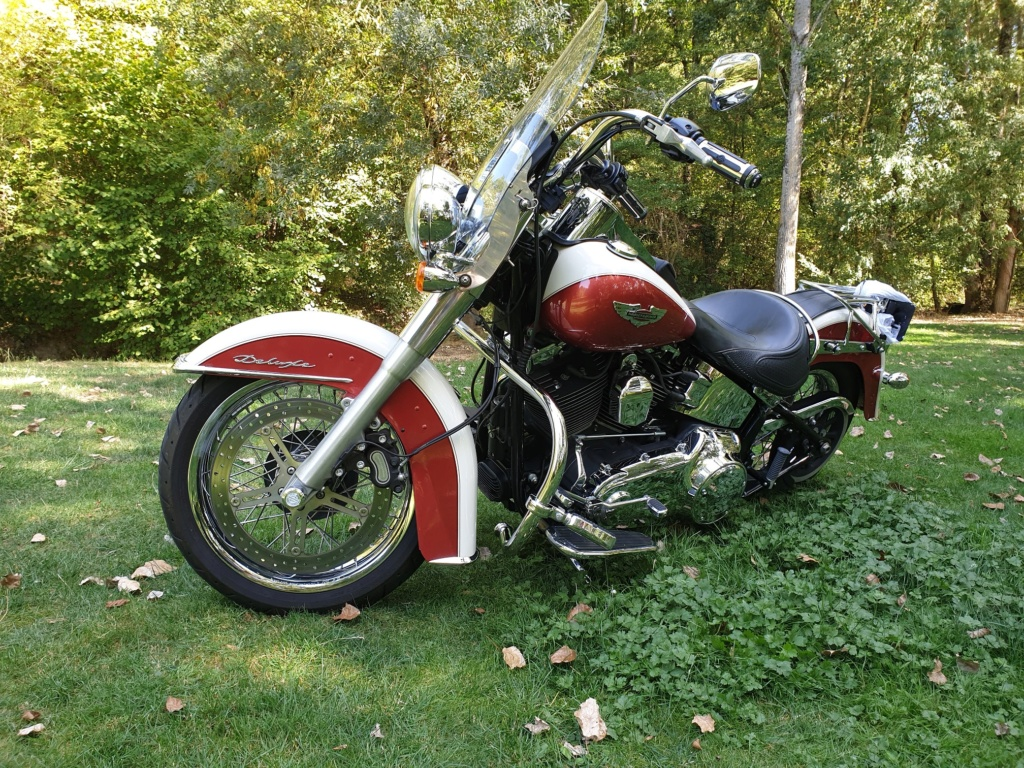 Softail DELUXE 20190913