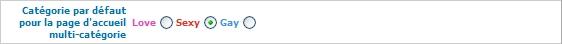 TUTO NIVEAU 2 - Pour un site personnalisé et référencé X310
