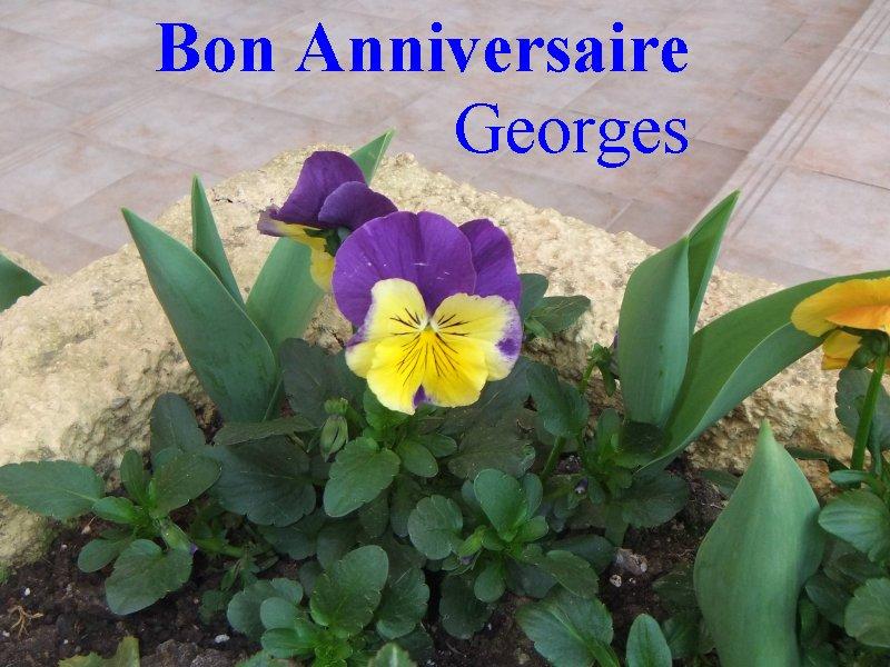 Bon anniversaire, Georges - Page 4 An_geo10