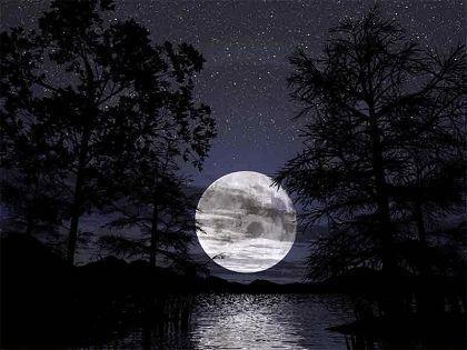 ..l'altra faccia della luna...( alice non abita più qui) - Pagina 16 A9723911