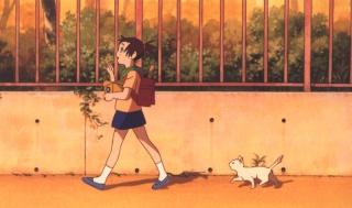 Les mondes de Mr  Miyasaki Film_210