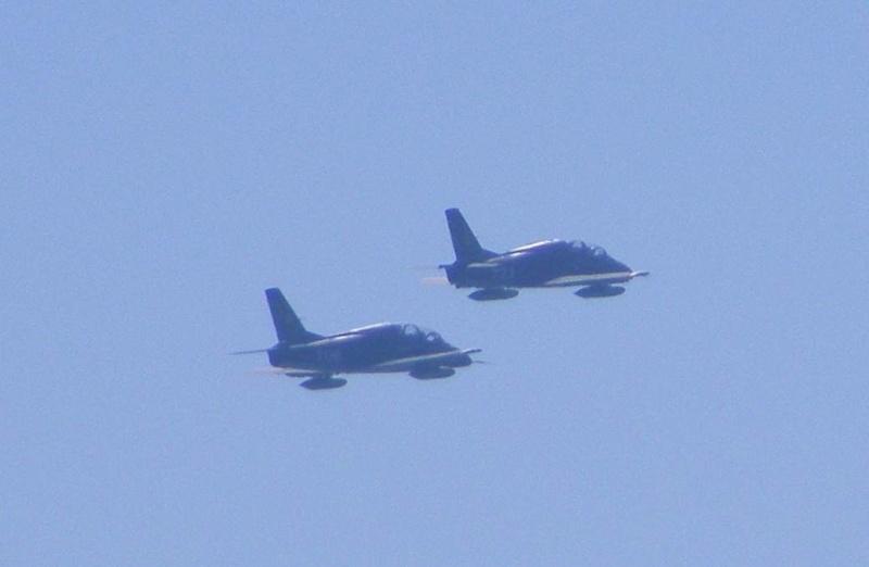 Ziua Marinei 2008 Dscf1618