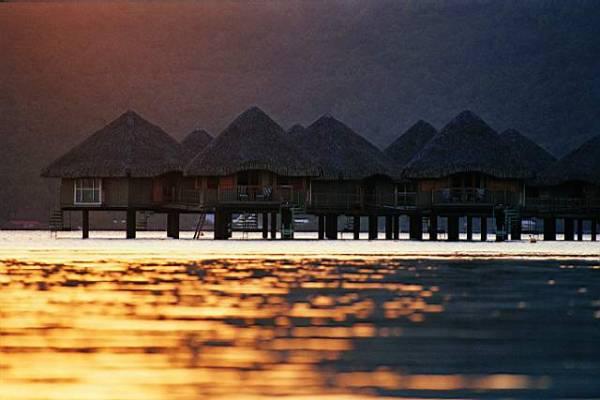 جزيرة الأحلام Tn_lmb17