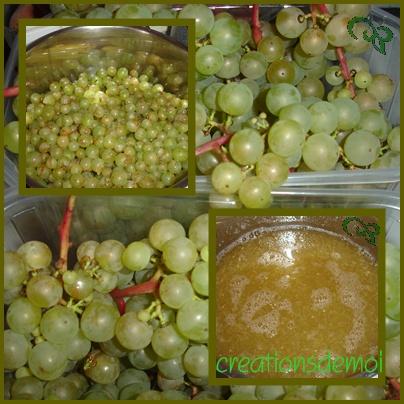 Confiture de raisin de vignes Confit11