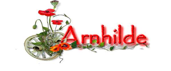 Méteo de janvier Arnhil20