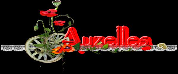 question du 14 janv Auzell22