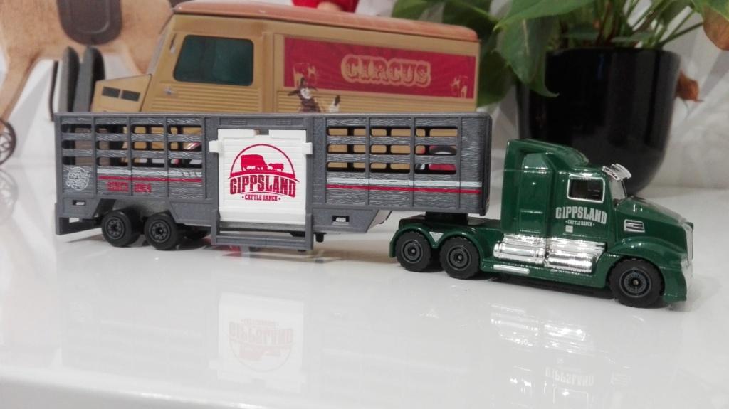N°614 Western Star 5700XE - animal transport Img_2415