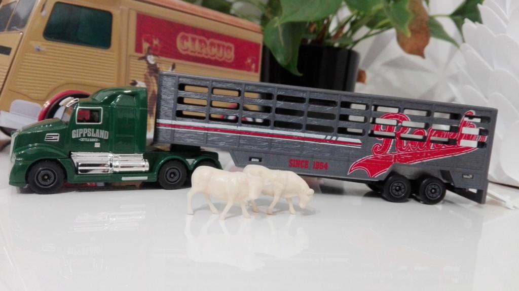 N°614 Western Star 5700XE - animal transport Img_2416