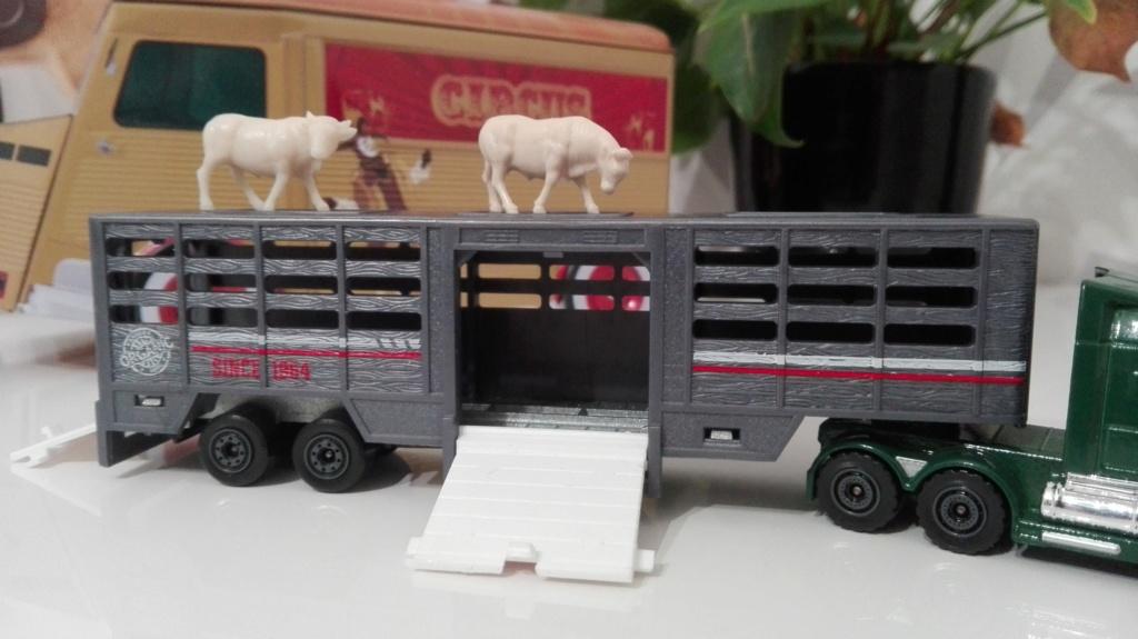 N°614 Western Star 5700XE - animal transport Img_2417