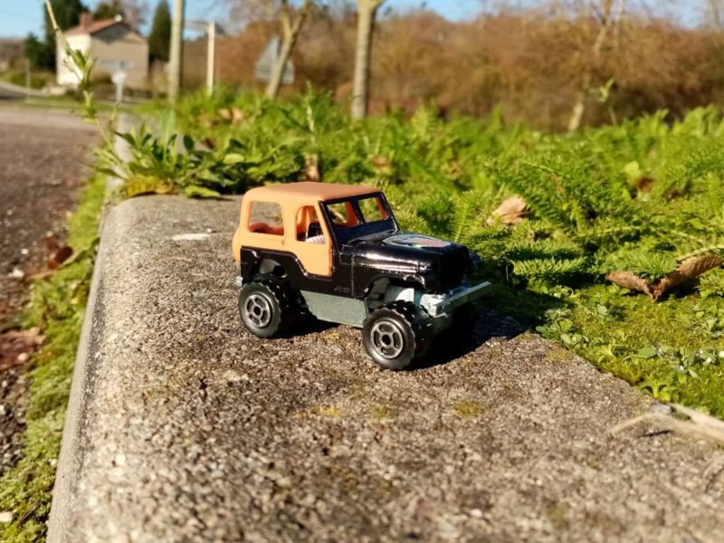 N°244 Jeep CJ Img_2764