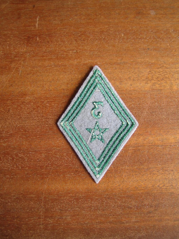 Losange 45 du 3 IEME Régiment de Tirailleurs Marocains Indo dernier prix ESC SEPT1 Img_0588