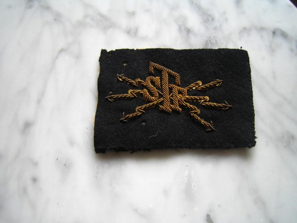 Dans la boite d'insignes de Scouts Img_3929