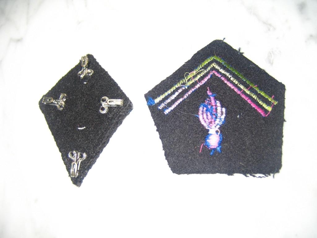Dans la boite d'insignes de Scouts Img_3933