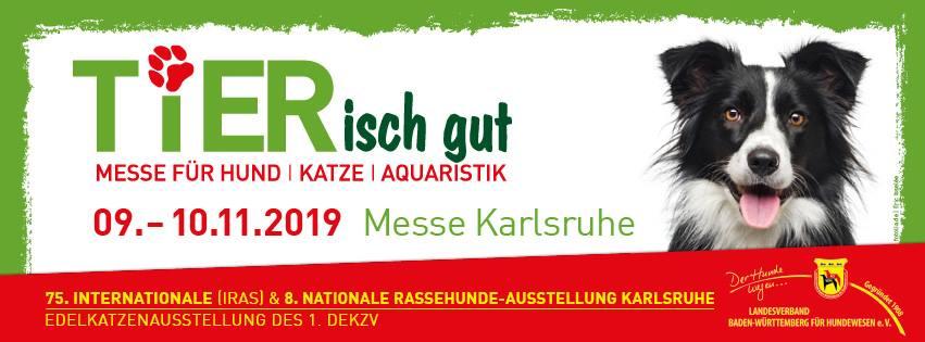 Tier isch gut - Karlsruhe (Allemagne) 46174510
