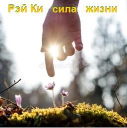 Рейки сила жизни