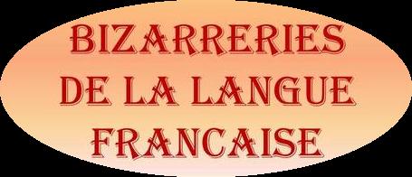 Expressions pour parler français..... - Page 21 Bizarr10