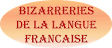 Expressions pour parler français..... - Page 21 Bizarr11