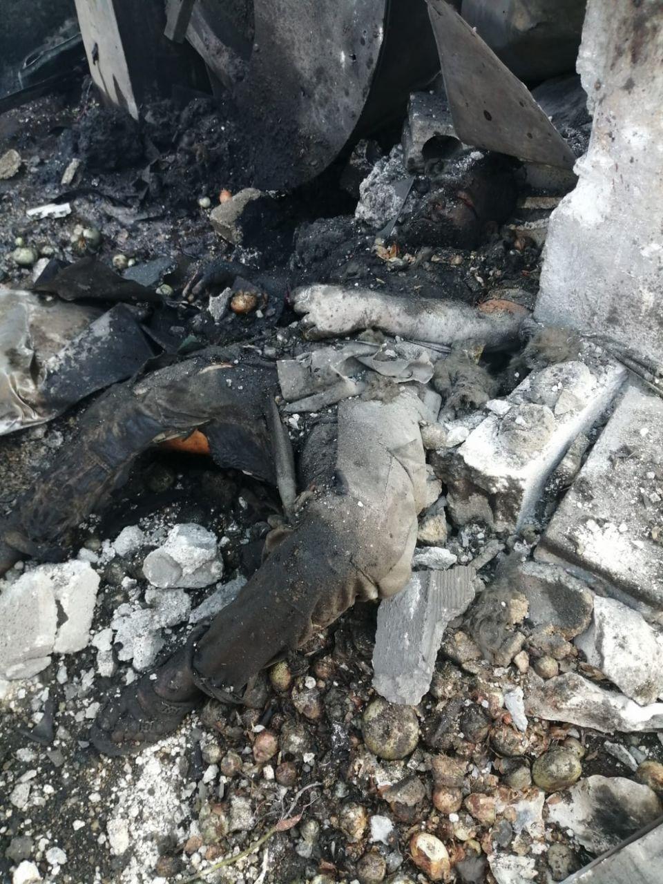 صورمؤلمة لشهداء مجزرة عفرين ١٨+ وكاميرات المراقبة ترصد المفخخة 6245b310