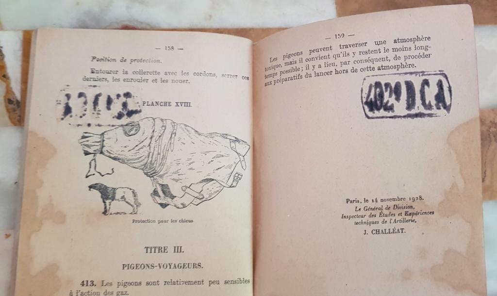 Instruction technique de protection contre les gazs - Edition 1929 20190629