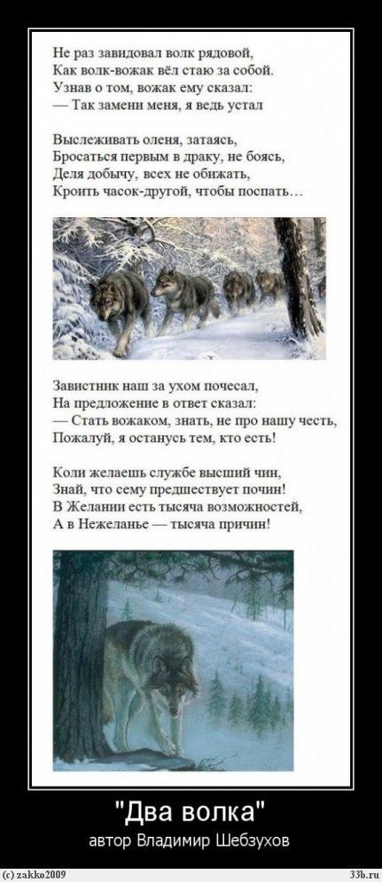 Владимир Шебзухов Притчи  - Страница 47 N__ecs10