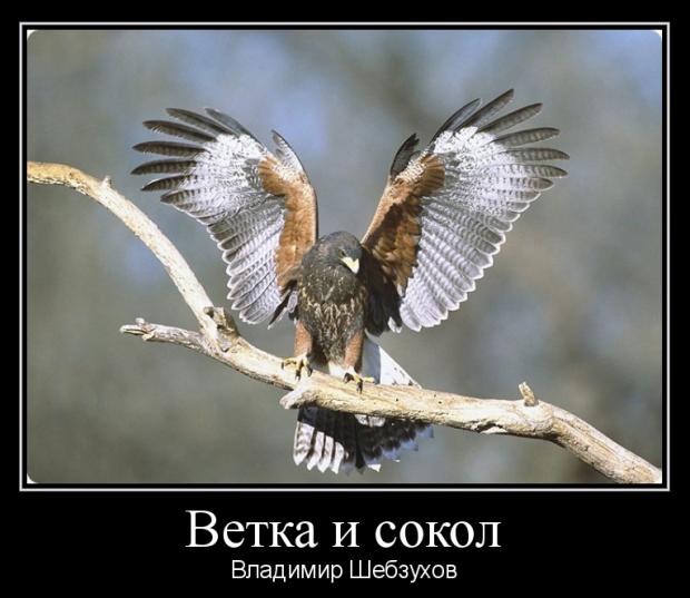 Владимир Шебзухов Притчи  - Страница 46 Nze__e10