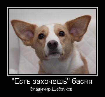 Владимир Шебзухов Притчи  - Страница 40 Zaau_a10