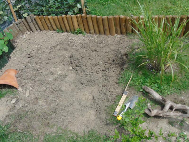 Projet et réalisation d'un bassin pour stenotherus odoratus Dsc03431