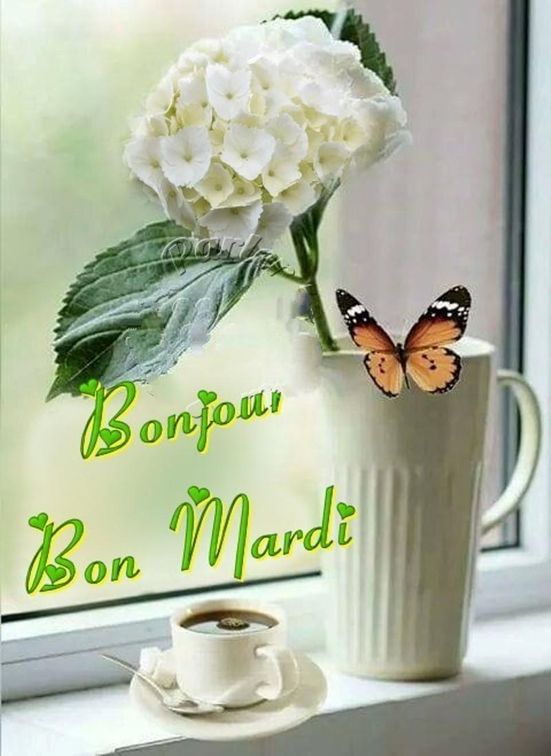 Les bonjours et contacts jounaliers du Mois d' Avril 2019 - Page 2 23041910
