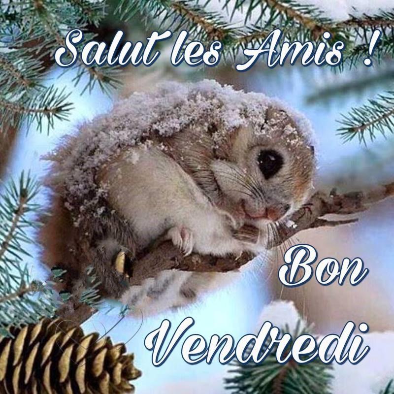 Les bonjours et contacts jounaliers du Mois de Janvier 2019 - Page 2 25011910