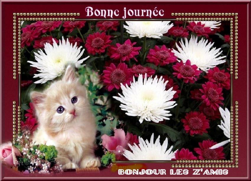 Les bonjours et contacts jounaliers du Mois d' Avril 2019 - Page 2 29041910