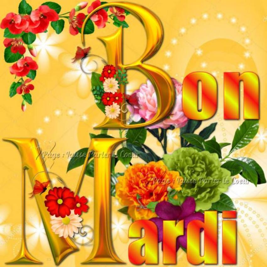 Les bonjours et contacts jounaliers du Mois d' Avril 2019 - Page 2 30041910