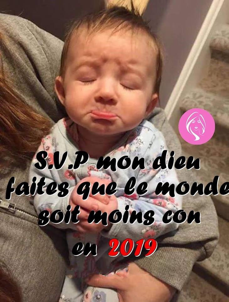 Les bonjours et contacts jounaliers du Mois de Janvier 2019 48982610