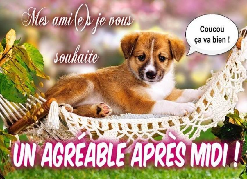 Les bonjours et contacts jounaliers du Mois de Septembre 2019 Bon_ap14