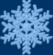 Flocons de neige - Page 11 Flocon11