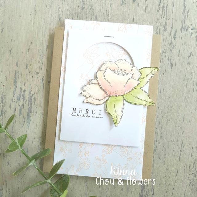Semaine 21 - Carte express par Kinna Photo287