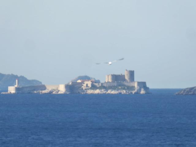un petit tour en Méditerranée et en musique - Page 3 P1170917