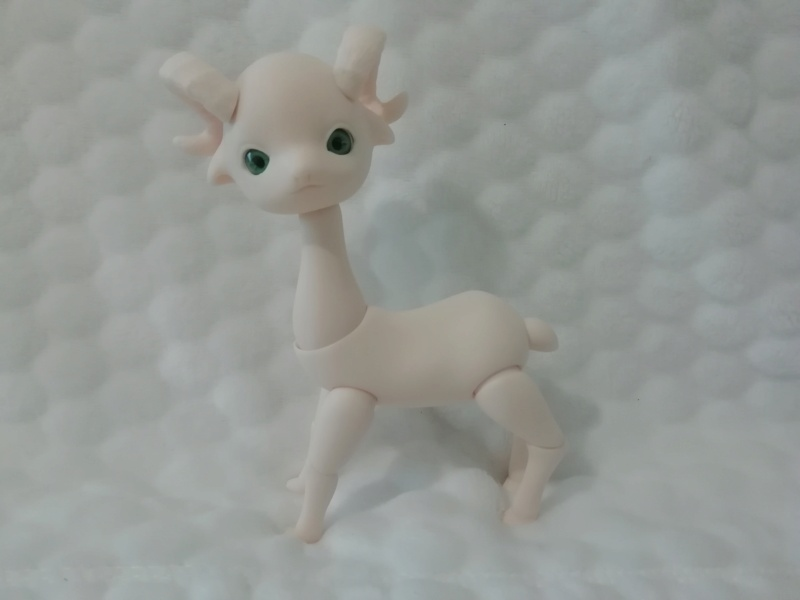 [VEND: Ombre bleue de lillycat ][Vente : Snowy Doll-leaves] Img_2024