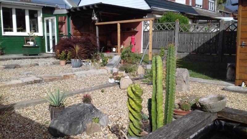 mon jardin dans les hauts de france - Page 9 20200712