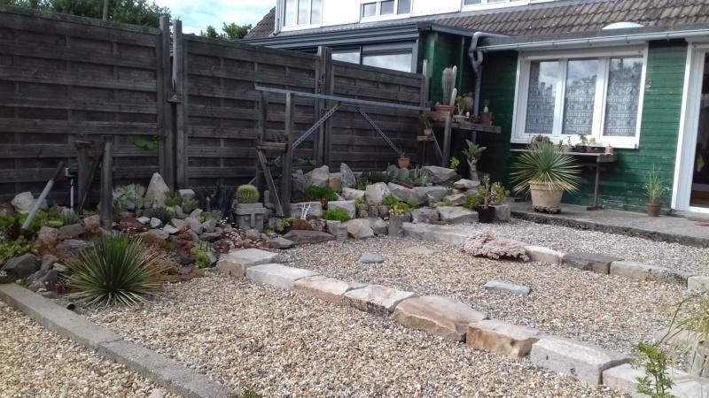 mon jardin dans les hauts de france - Page 9 20200713