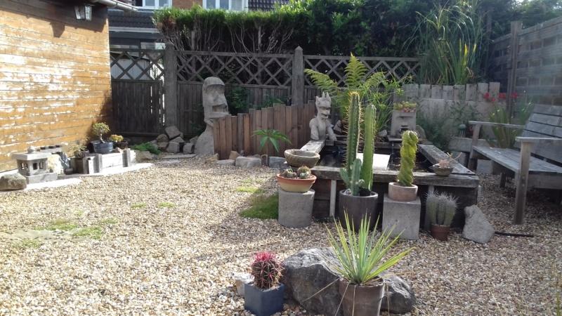 mon jardin dans les hauts de france - Page 9 20200714