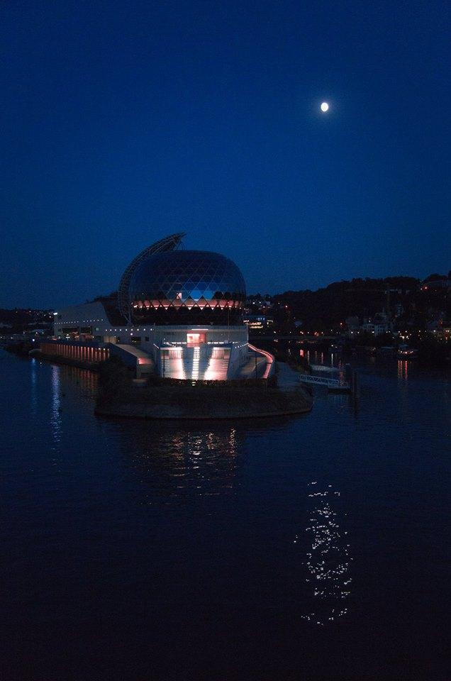 La Seine Musicale de l'île Seguin 39917110