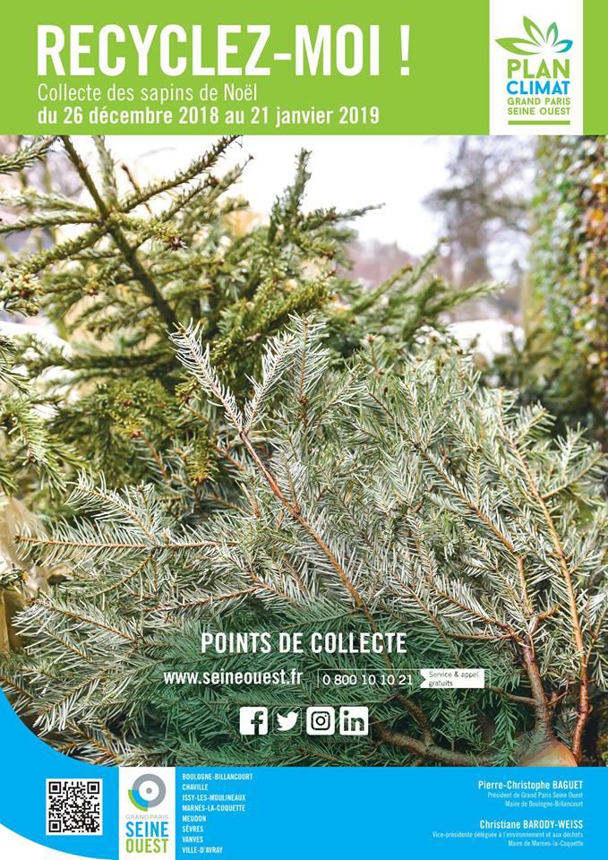 Collecte de sapins par Grand Paris Seine Ouest (GPSO) 49044810