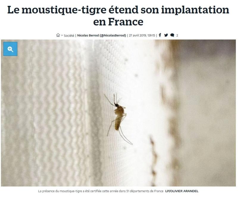 Présence de moustiques Clip1175