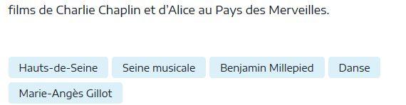 Concerts et spectacles à la Seine Musicale de l'île Seguin Clip1322