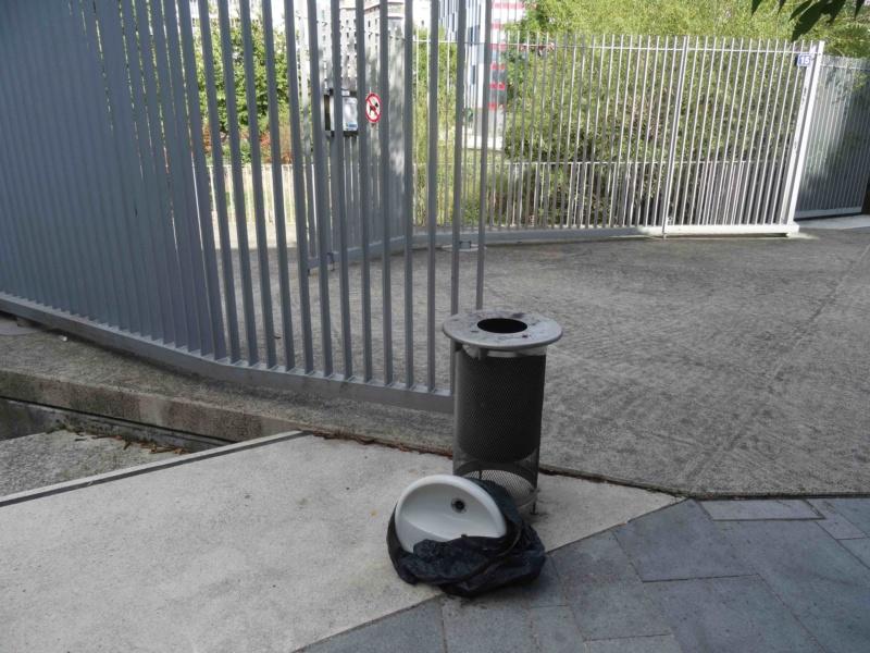 Encombrants, poubelles et caddies Dsc00014