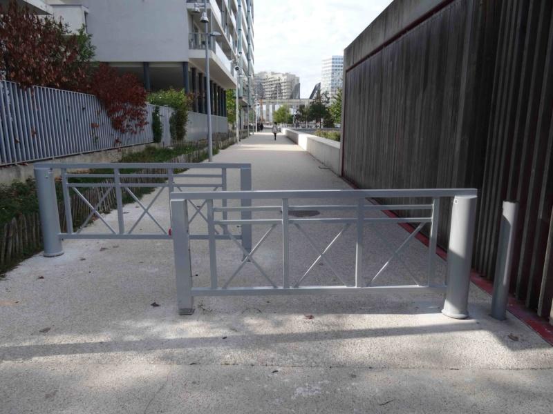 Véhicules sur voies piétonnes (allée Askinazi, esplanades du parc, etc) Dsc00015