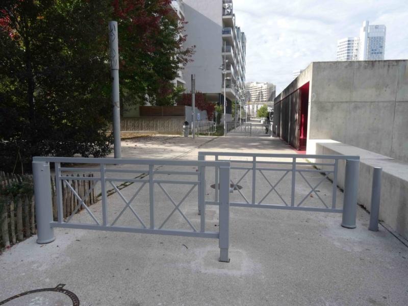Véhicules sur voies piétonnes (allée Askinazi, esplanades du parc, etc) Dsc00016