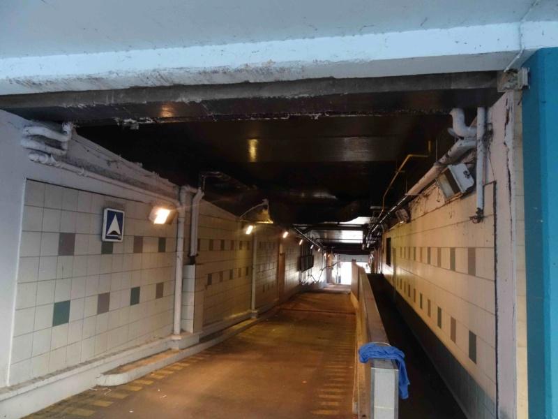 Rénovation du passage commercial du quartier du Pont de Sèvres Dsc00141